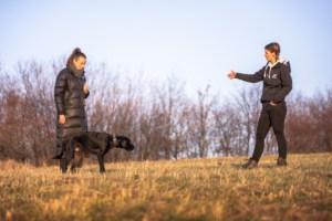 Hundetraining mit Nicole Hertel