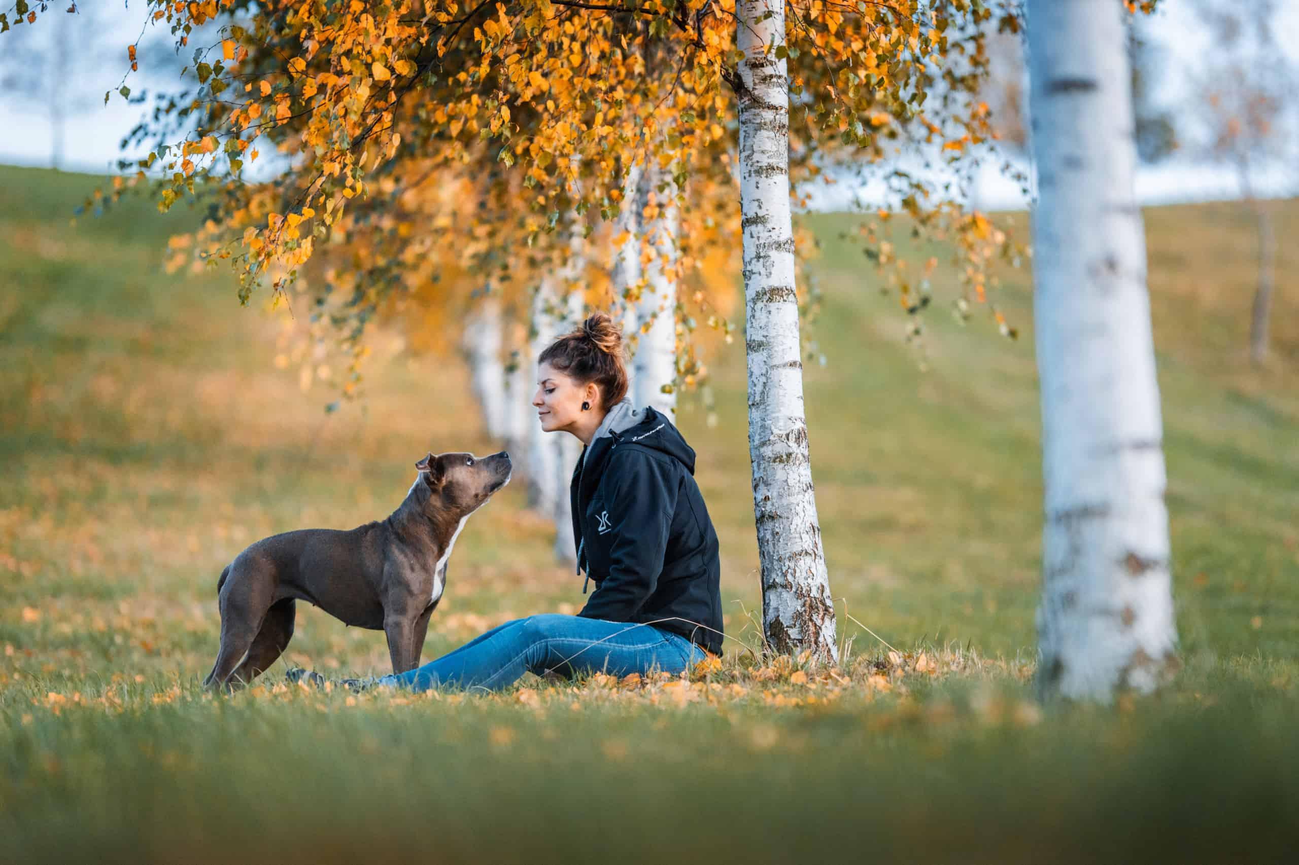 Kommunikation Mensch- Hund